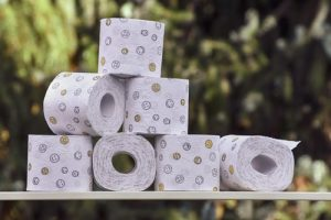 healthy bowel movement - toilet paper